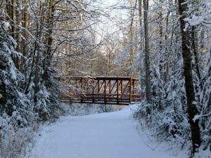 Alaska Trail Bridge in Winter