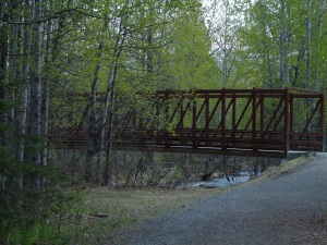 Alaska Trail Bridge in Summer