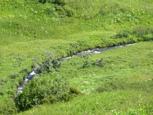 Stream flowing through the valley