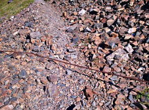 cable running across the trail