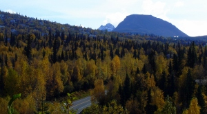 Fall Colors and Flattop Mountain