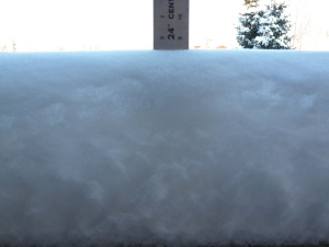 Almost 9 inches of snow