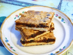 Chewy Coconut Peanut Butter Chocolate Chip Bars