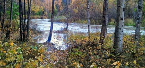 Water creeping over the bank of the stream