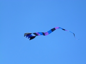 It certainly was a good day to fly a kite