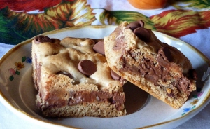 Milk Chocolate Cinnamon Cookie Bars