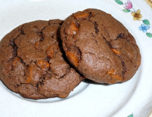 Mexican Spice Cinnamon Chip Cookies